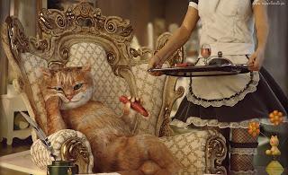 O luksusie 3